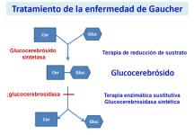 ¿Tiene tratamiento la enfermedad de Gaucher?