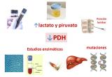 ¿Cómo se diagnostica la deficiencia de PDH?