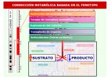 Corrección metabólica basada en el fenotipo. Imagen: Dra. Belén Pérez González