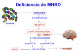 ¿Qué ocurre en la deficiencia de MHBD?