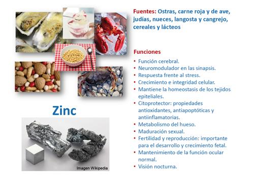 Importancia de los elementos traza en los errores cong nitos del metabolismo gu a metab lica - En que alimentos se encuentra zinc ...