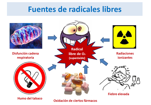 Estrés oxidativo en las enfermedades metabólicas