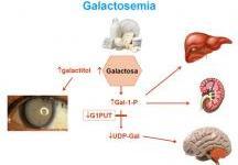 Diagnóstico clínico - Guía Metabólica