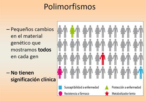 Resultado de imagen de Los polimorfismos del ADN