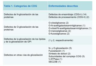 ¿Cuáles son los diferentes tipos de CDG?