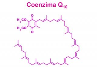¿Qué es el coenzima Q10?