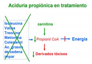 ¿Qué hay que hacer para evitar las consecuencias de una aciduria propiónica?