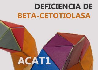Deficiencia de beta-cetotiolasa (BKT)