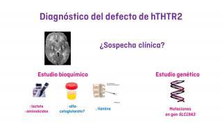 ¿Cómo se diagnostica el déficit de hTHTR2?