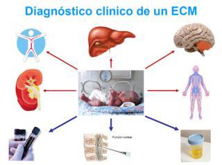 Diagnóstico clínico. Imagen: HSJDBCN