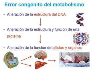 Error congénito del metabolismo. Imagen: HSJDBCN