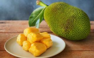 La jackfruit o jaca