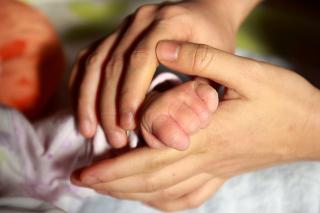Manos de adulto y bebé