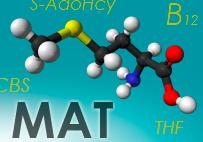 Deficiencia de metionina adenosil-transferasa (MAT)