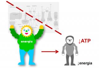 ¿Por qué se produce un defecto en la producción de energía?