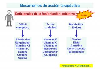 ¿Qué tratamientos se aplican a las enfermedades mitocondriales?
