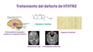 tratamiento del defecto de hTHTR2