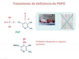 Tratamiento de la deficiencia de PNPO. Imagen: HSJDBCN