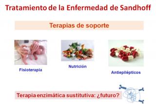 Tratamiento de la Enfermedad de Sandhoff