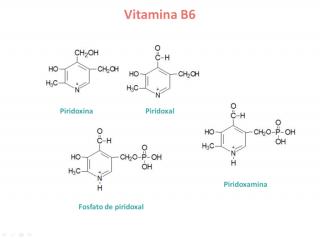 Vitamina B6. Imagen: HSJDBCN