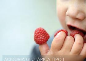 Guía para familias con las principales directrices europeas para el diagnóstico y tratamiento de la aciduria glutárica tipo 1