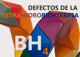 Defectos de la tetrahidrobiopterina (BH4). Imagen: HSJDBCN