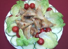 Briwat salada