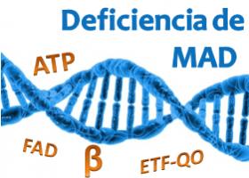 Deficiencia de MAD. Imagen: HSJDBCN