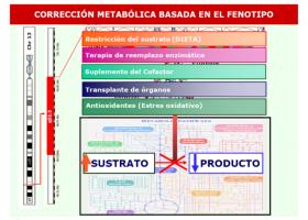Corrección metabólica basada en el fenotipo