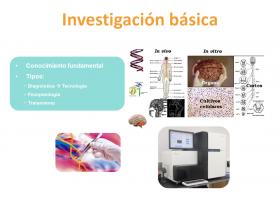 Investigación básica y aplicada en los errores congénitos del metabolismo