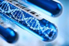 Metaboloma en acidurias orgánicas en descompensación
