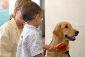Intervención asistida con animales en el Hospital Sant Joan de Déu