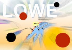 Síndrome de Lowe
