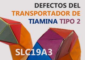 Defectos del transportador de tiamina tipo 2