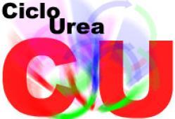 Defectos del ciclo de la urea