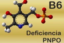 Deficiencia de PNPO. Imagen: HSJDBCN