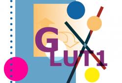 Deficiencia del transportador de glucosa GLUT 1