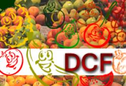 Deficiencia cerebral de folato (DCF)