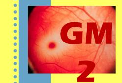 Gangliosidosis GM2