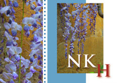Hiperglicinemia no cetósica (NKH)