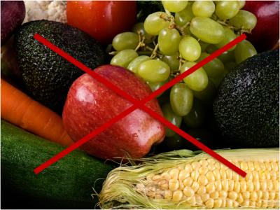 Pauta de alimentación en la Intolerancia hereditaria a la fructosa (IHF)