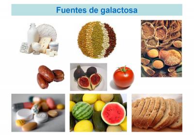 Fuentes de galactosa. Imagen: HSJDBCN
