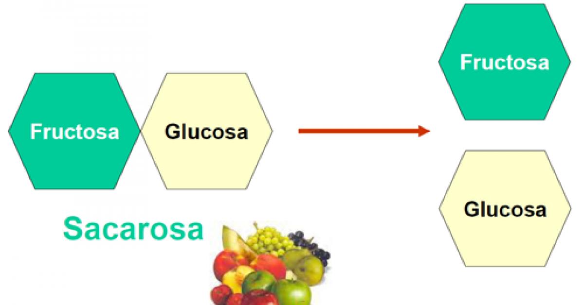 Dieta sin lactosa y fructosa